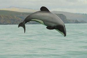 Foto: Aqua Views
