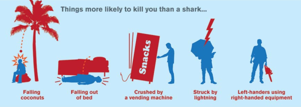 Things more likely to kill you than a shark...