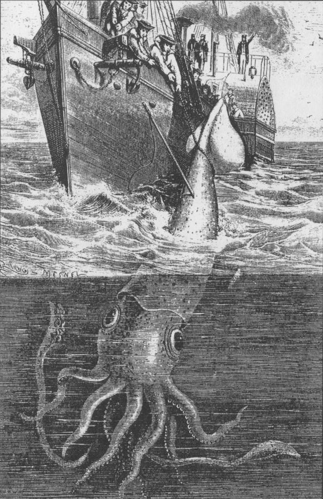 jättebläckfisk